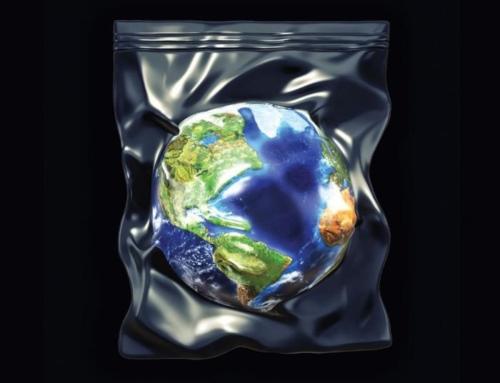 Пластиковые пакеты – экологическая проблема